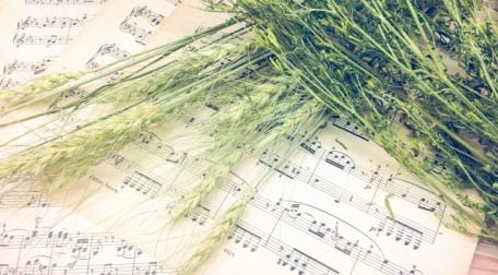 音楽と癒し